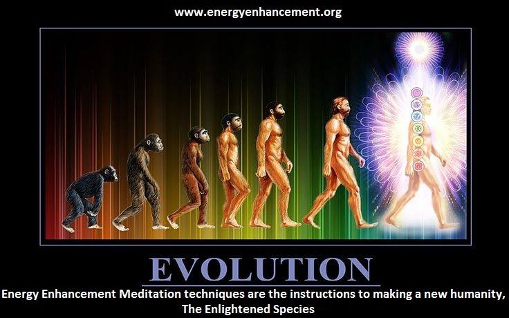 Image result for evolution energyenhancement.org