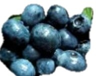 Blueberry - nutritional information