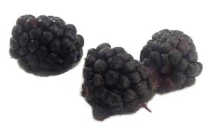 Boysenberry - nutritional information