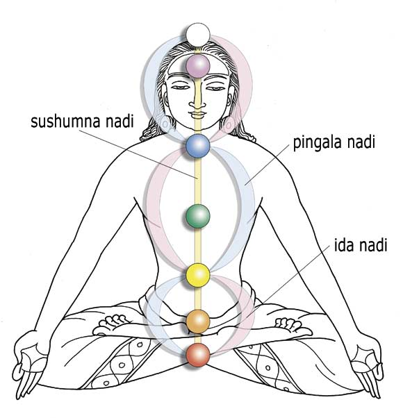 CHAKRAS, IDA PINGALA SUSHUMNA AND THE CADUCEUS