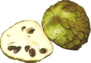 Cherimoya - nutritional information